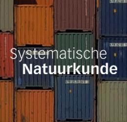 Systematische natuurkunde -LRN-line